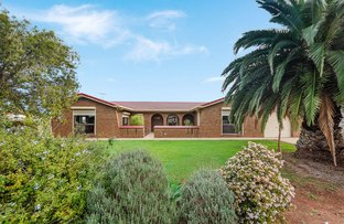 Picture of 11 Commerce Road, Murray Bridge SA 5253