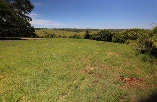 Picture of 135 Richmond Hill Road, Richmond Hill NSW 2480
