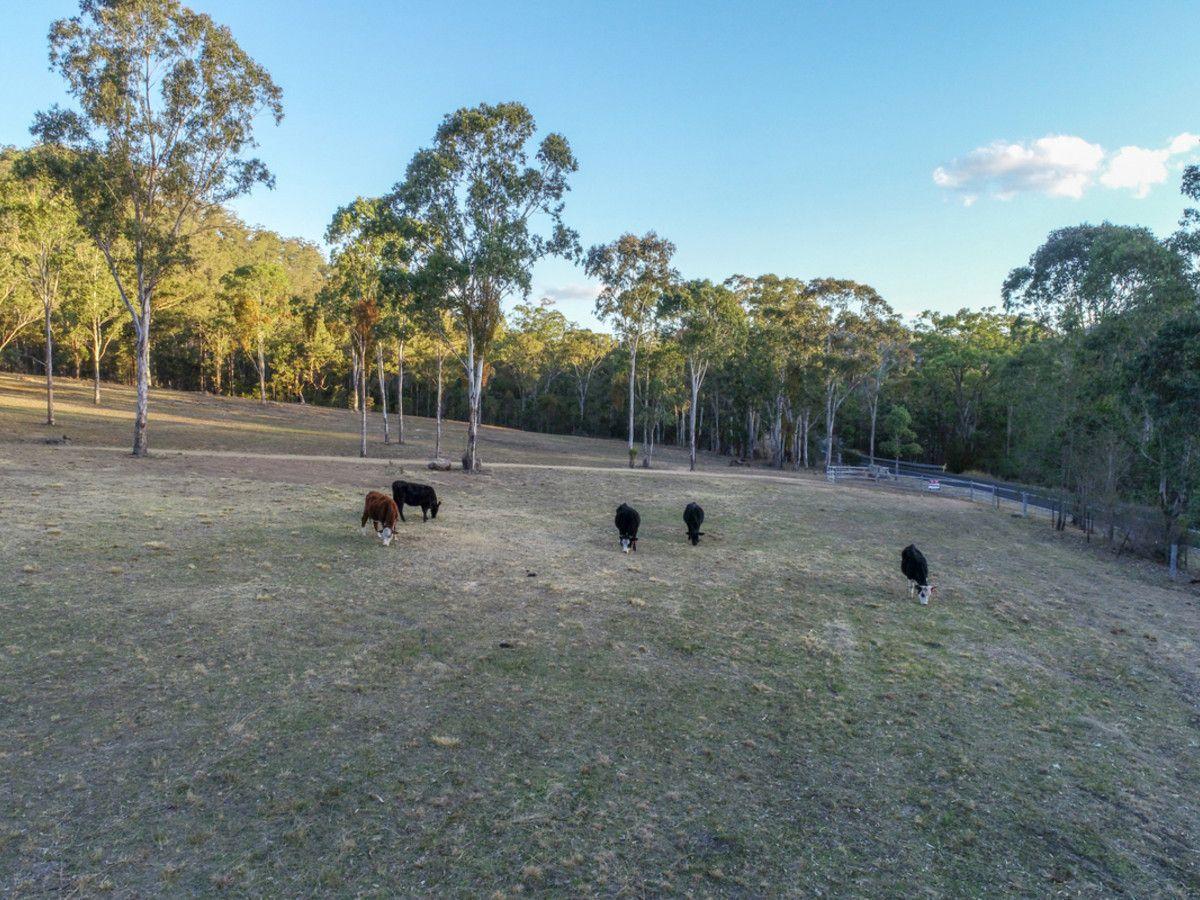 1087 Wollombi Road, Broke NSW 2330, Image 2