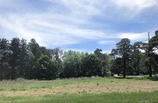 Picture of 17 Eridge Park Road, Burradoo NSW 2576