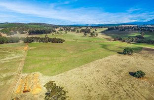 Picture of 'WEEWALLA' 302 Craigie Range Road, Delegate NSW 2633