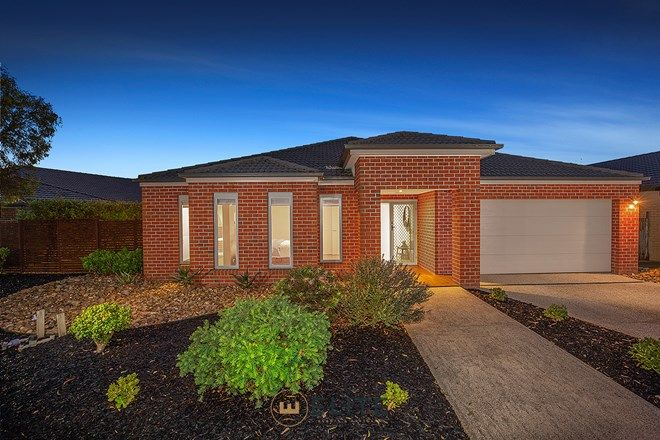 Picture of 144 Alisma Boulevard, CRANBOURNE NORTH VIC 3977