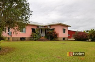 Picture of 1136 Silkwood Japoon Road, Silkwood QLD 4856