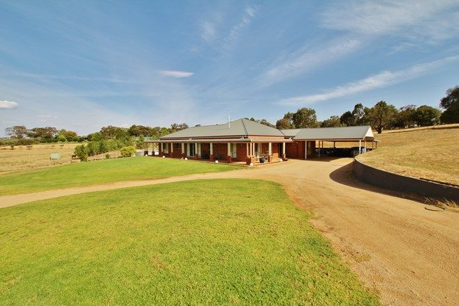 Picture of 109 Kellys Road, YOUNG NSW 2594