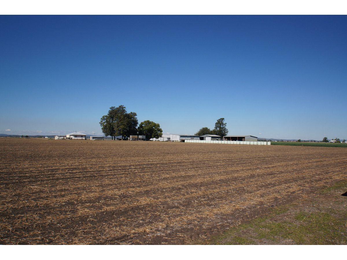 Lester Road, Morton Vale QLD 4343, Image 1