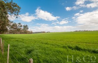 Picture of 1121 Yarragon-Shady Creek Road, Shady Creek VIC 3821