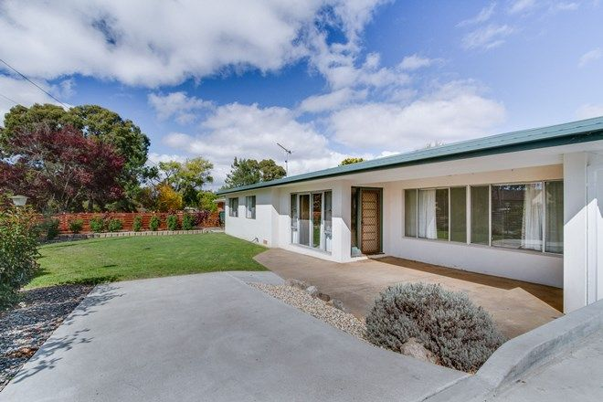 Picture of 100 Lynches Road, ARMIDALE NSW 2350