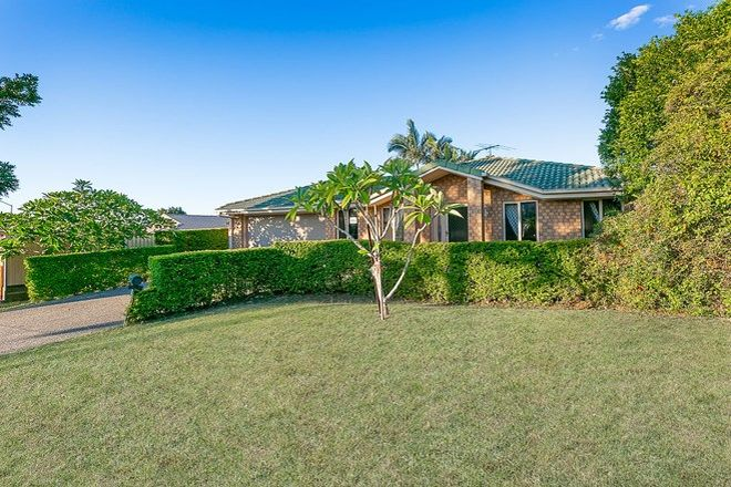 Picture of 154 Henty Drive, REDBANK PLAINS QLD 4301