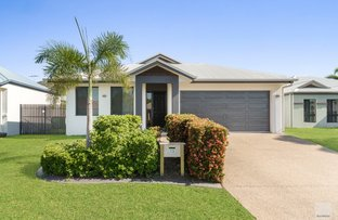Picture of 13 Sea Eagle Circuit, Douglas QLD 4814