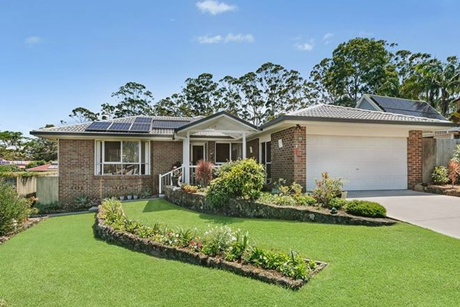 Picture of 14 Rosewood Avenue, BANGALOW NSW 2479