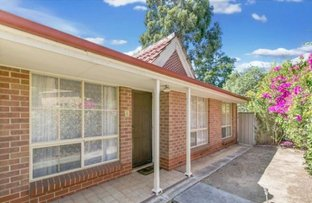 Picture of 8/22 Mortimer Street, Kurralta Park SA 5037