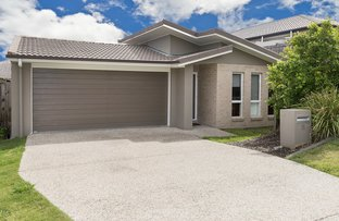 11 Cairnlea Drive, Pimpama QLD 4209