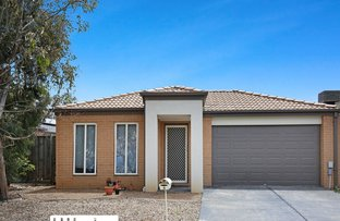 Picture of 6 Treeview Drive, South Morang VIC 3752