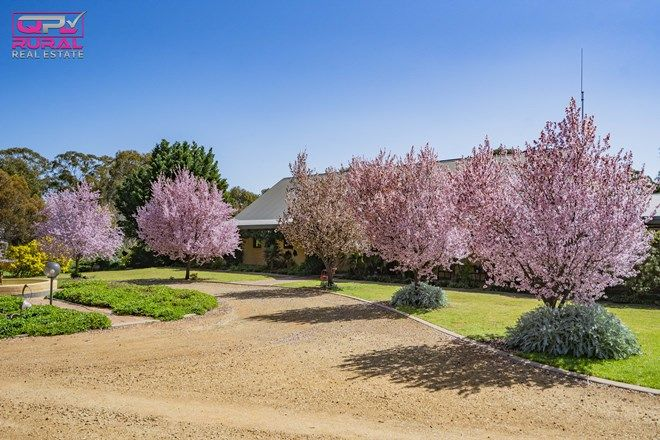 Picture of 180 Bundawarrah Road, TEMORA NSW 2666