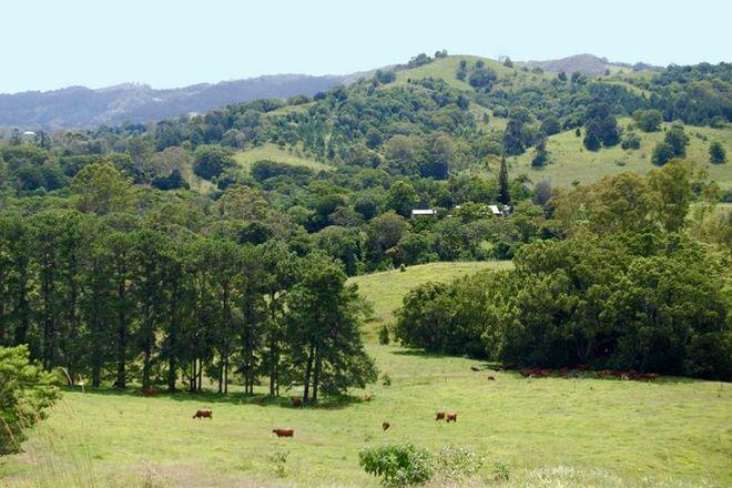 Picture of 1 Grasstree Rd, EUMUNDI QLD 4562