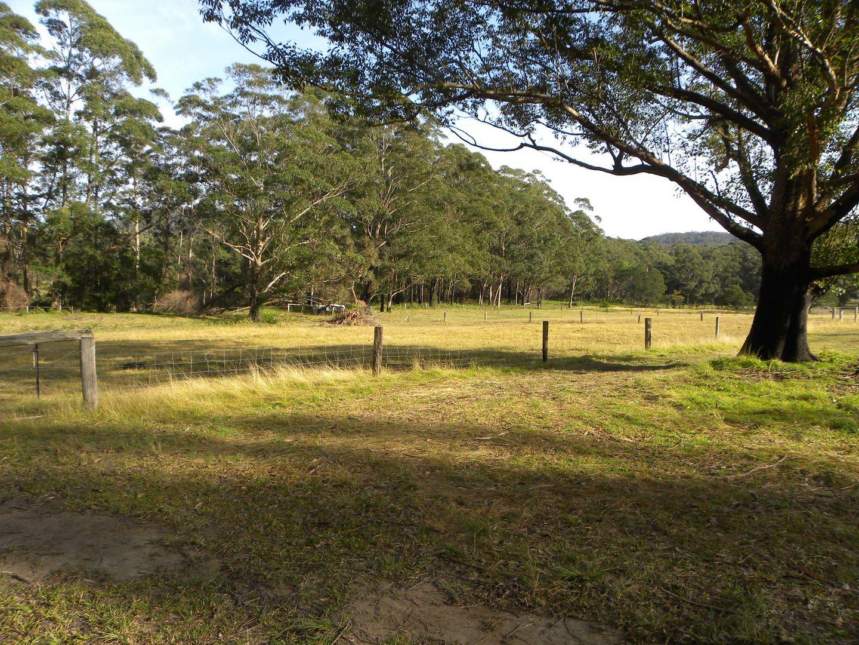 40, Lot 40 Hancocks Creek, Wandandian NSW 2540, Image 1