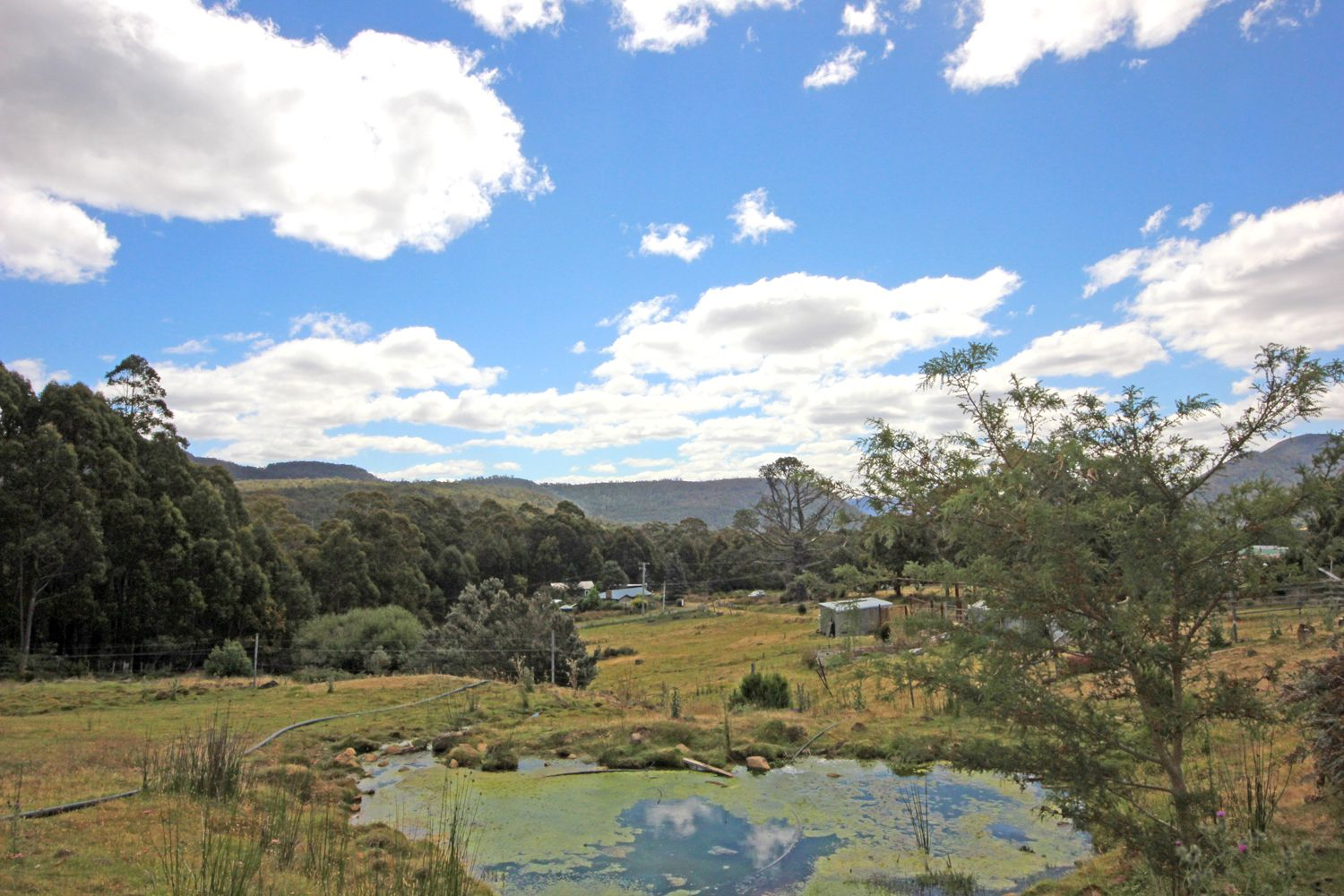 164 Mount Hull Road, Collinsvale TAS 7012, Image 2