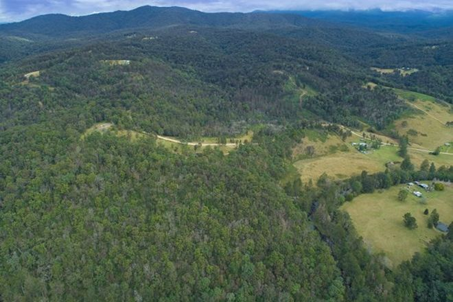 Picture of 1100 Dungay Creek Road, WITTITRIN NSW 2440