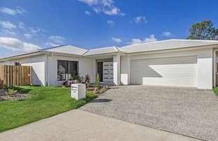 Picture of 117  O'Reilly Drive , Coomera QLD 4209