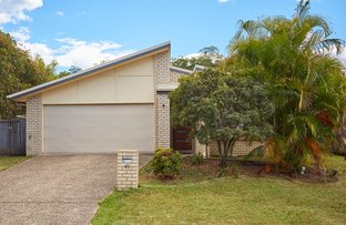 Picture of 23 Pecan Drive, Upper Coomera QLD 4209