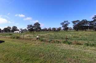Picture of 12 Harrier Street, Temora NSW 2666