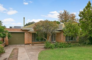Picture of 26 Emily Avenue, Clapham SA 5062