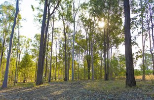 Picture of 64 Cliff Jones Rd, Curra QLD 4570