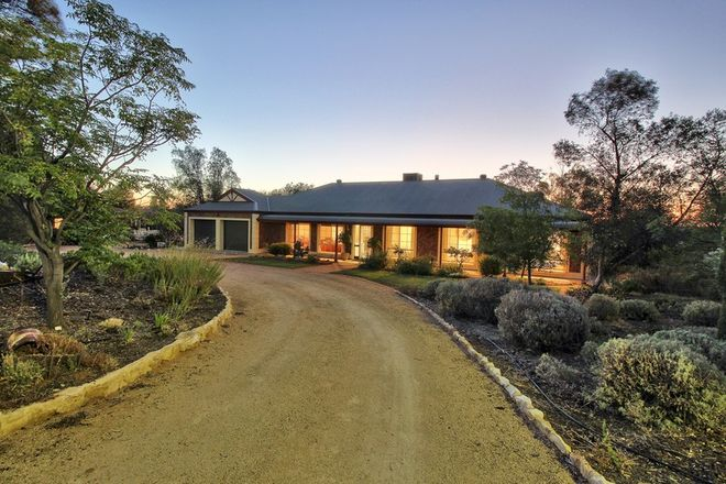 Picture of 52 WHEATLEY ROAD, LOXTON SA 5333