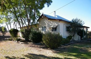 Picture of Plainview/629 Merriwa Road, Willow Tree NSW 2339