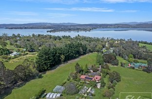 Picture of 41 Sheppard Avenue, Hillwood TAS 7252