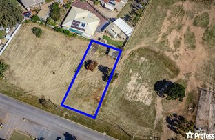 Picture of 11 Vincent Street, Spalding WA 6530