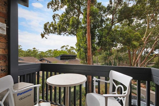 Picture of 215/36-42 Cabbage Tree Road, BAYVIEW NSW 2104