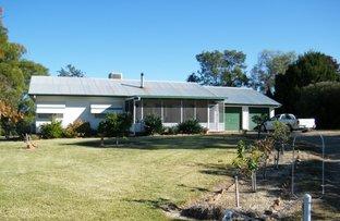 Picture of 5 Storey Street, Quirindi NSW 2343