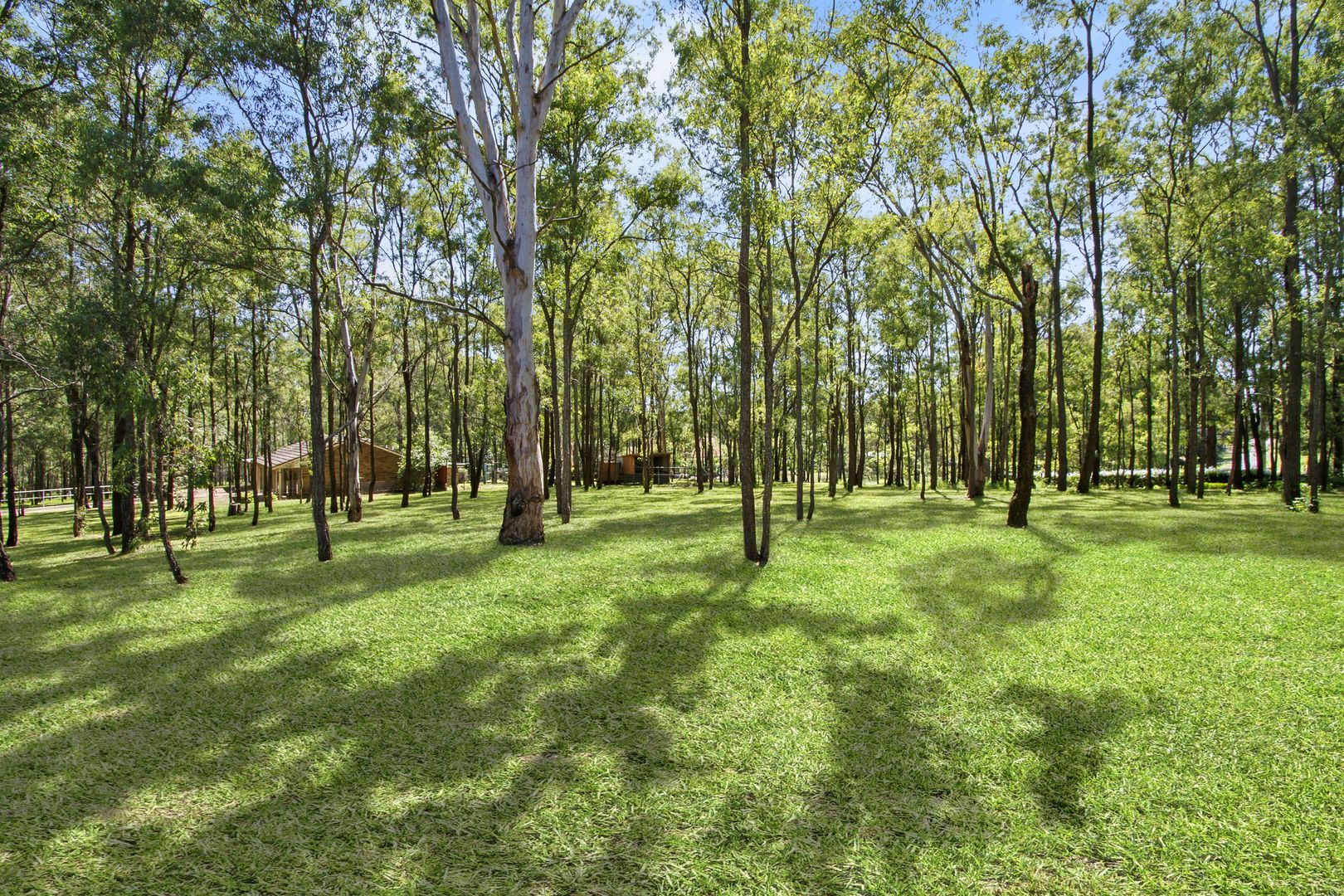 314 Spinks Road, Glossodia NSW 2756, Image 1
