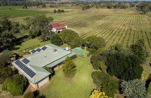 Picture of 8428 Mitchell Highway, Neurea NSW 2820