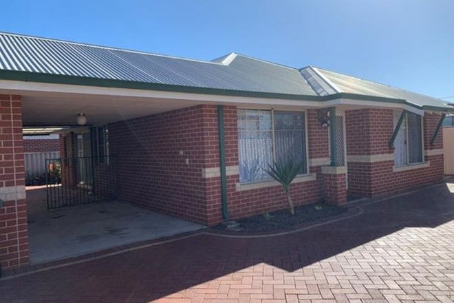 Picture of 3/36 Forrest Street, EAST BUNBURY WA 6230