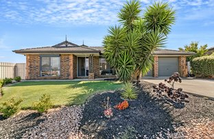 Picture of 10 Mansfield Street, Noarlunga Downs SA 5168