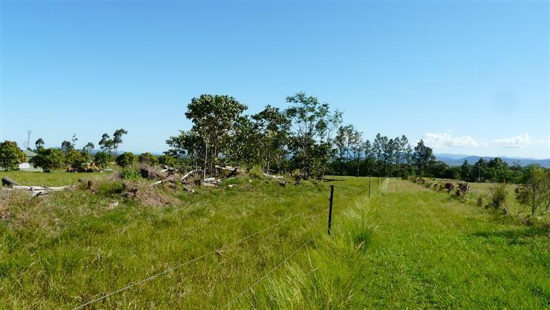 32 Mt Leeper Road, MOURILYAN HARBOUR QLD 4858, Image 2