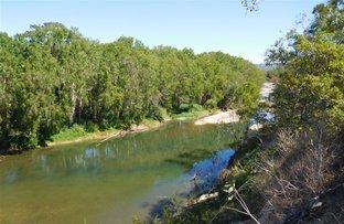 205 Dunwold-Cattle Creek Road, Mirani QLD 4754