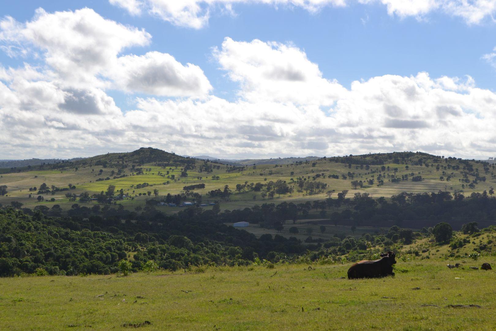 202 Dearling Road, Haden QLD 4353, Image 1