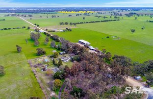 Picture of 1273 Gap Rd, Frances SA 5262
