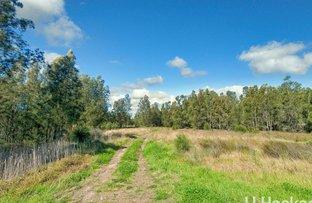 Picture of 232 Lemon Tree Passage Road, Salt Ash NSW 2318