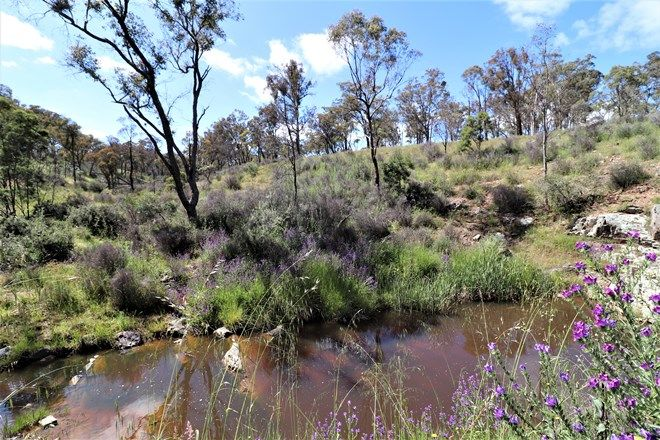 Picture of 19,  & 53/384 Old Federal  Highway, BYWONG NSW 2621