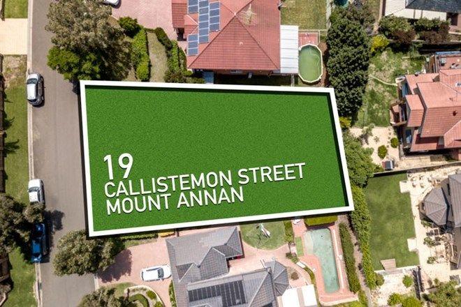 Picture of 19 Callistemon Street, MOUNT ANNAN NSW 2567