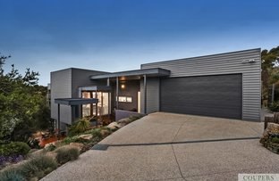 Picture of 6 Tralee Lane, Fingal VIC 3939