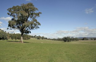 Picture of Lot 1 Sheans Creek Rd, Euroa VIC 3666