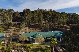 Picture of 2865 MOUNT DARRAGH ROAD, Wyndham NSW 2550
