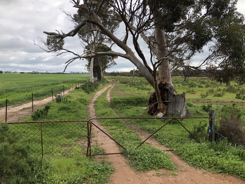 222 Goldfields Road, Dowerin WA 6461, Image 1