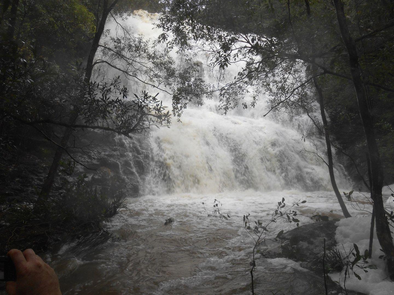714 Fairweather Creek Rd, Nymboida NSW 2460, Image 2