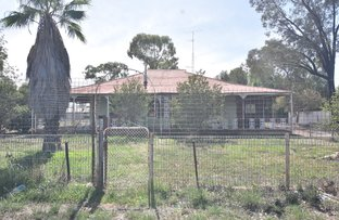 Picture of 23 WILGA STREET, Barellan NSW 2665